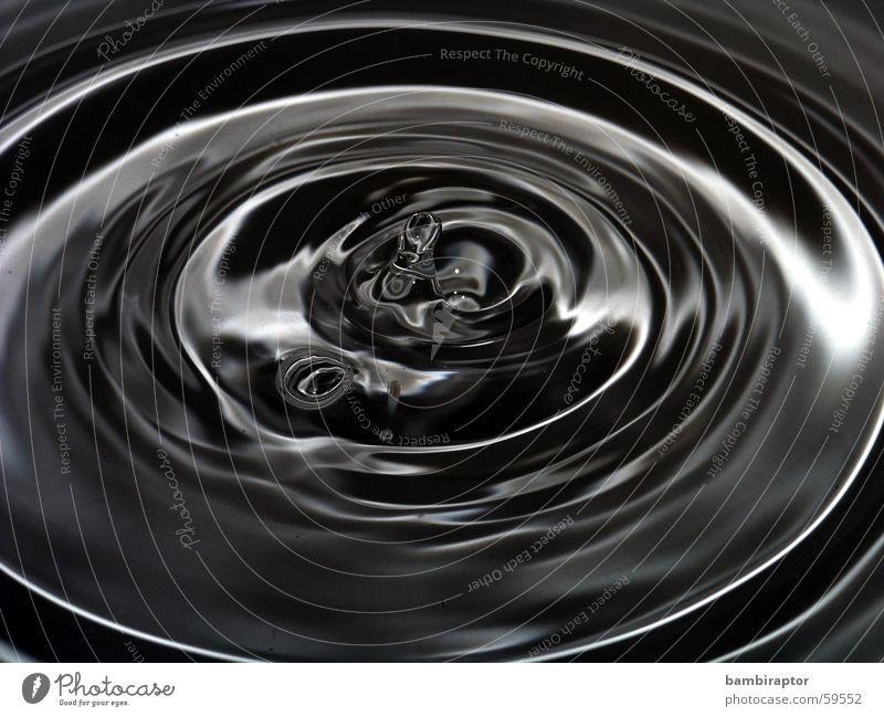 sad waters Drops of water Waves Macro (Extreme close-up) Black White Water Circle concentric circles Reflection drop wave Black & white photo