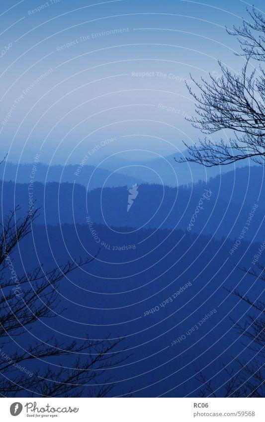 blue Highlands Black Forest Morning Twilight Mountain range Landscape Blue Dawn