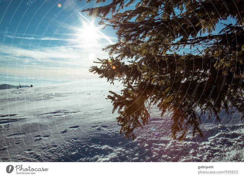 Winter is coming Environment Nature Landscape Sky Horizon Sun Sunlight Weather Beautiful weather Snow Mountain Cold Natural Blue White Joie de vivre (Vitality)