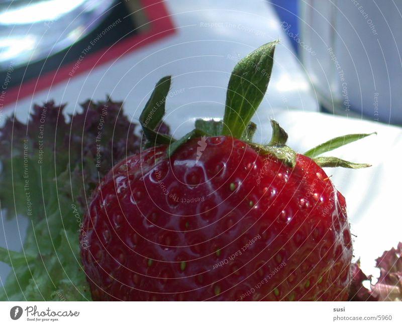 strawberry Nutrition Strawberry Fruit