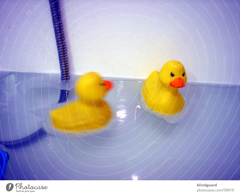 Water Blue Yellow Playing Bathroom Swimming & Bathing Toys Bathtub Duck Squeak duck