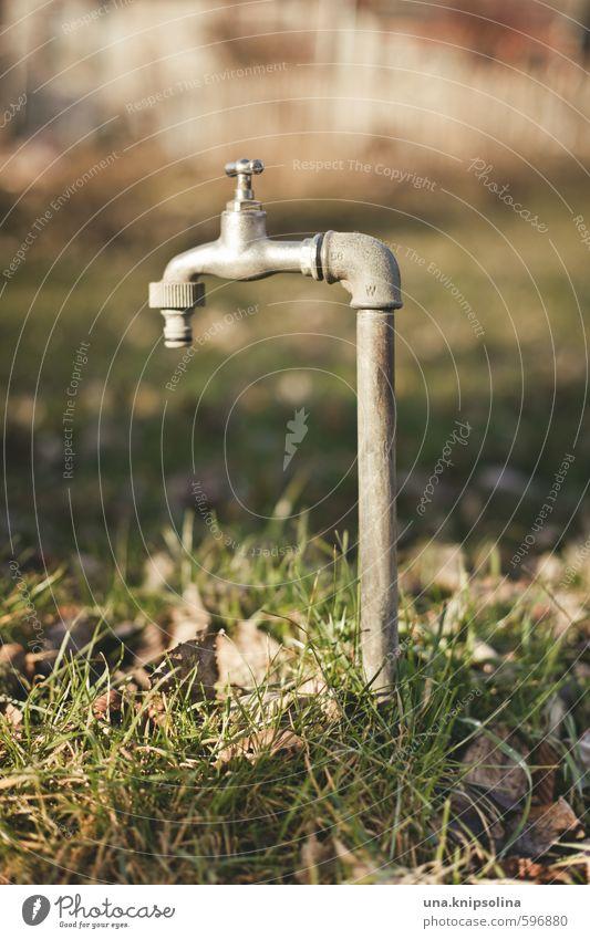 Green Leaf Meadow Gray Garden Stand Wet Tap