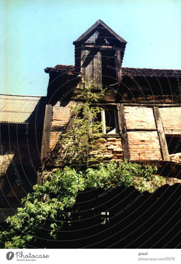 Architecture Ruin Backyard