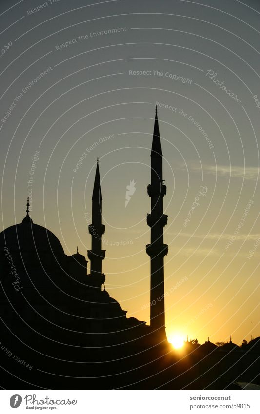 shortly before 1001 night Istanbul Mosque Sunset Islam Religion and faith Town Turkey