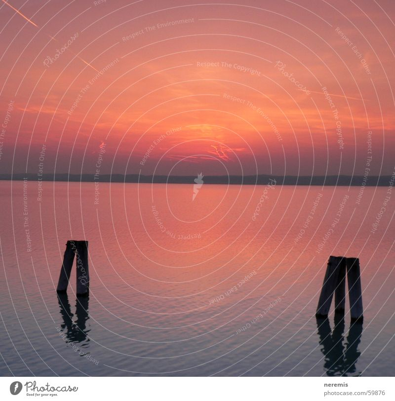 sunset Lake Sunset Horizon Calm Relaxation Austria Podersdorf am See Red Water Lake Neusiedl Sky Orange