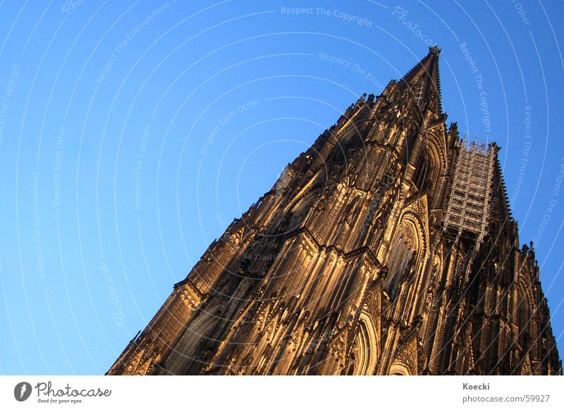 Hey Kölle du bis e Jeföhl Colour photo Exterior shot Deserted Copy Space left Day Twilight Light Silhouette Summer Sun Sky Cloudless sky Beautiful weather