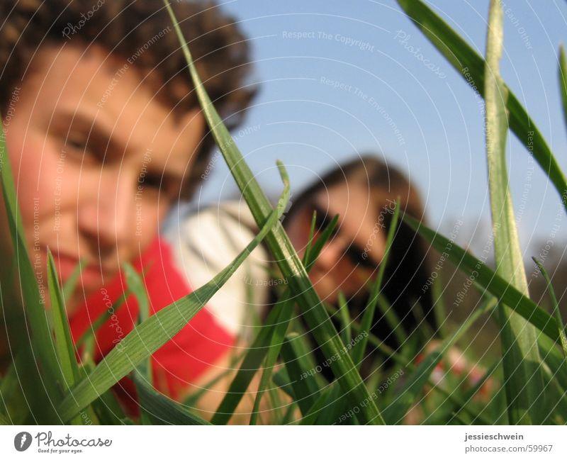 Sun Meadow Grass Spring Park Free Picnic Weimar