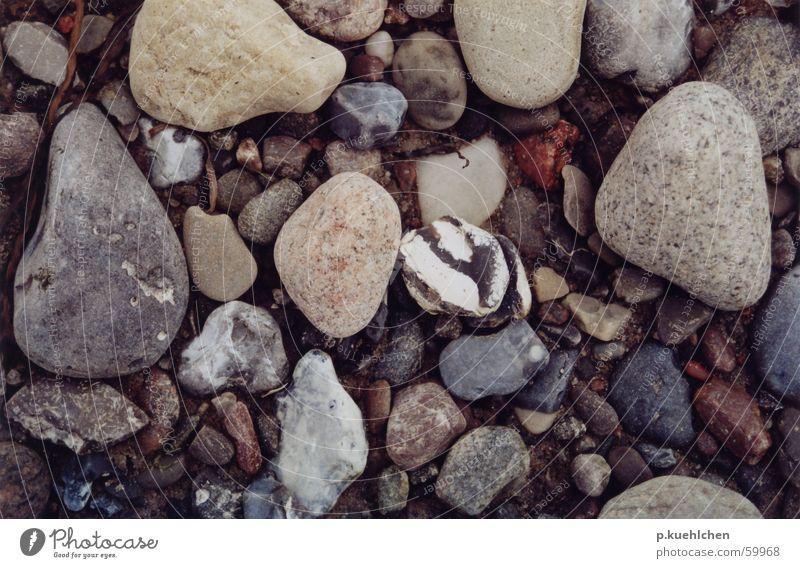 Beach Stone Baltic Sea