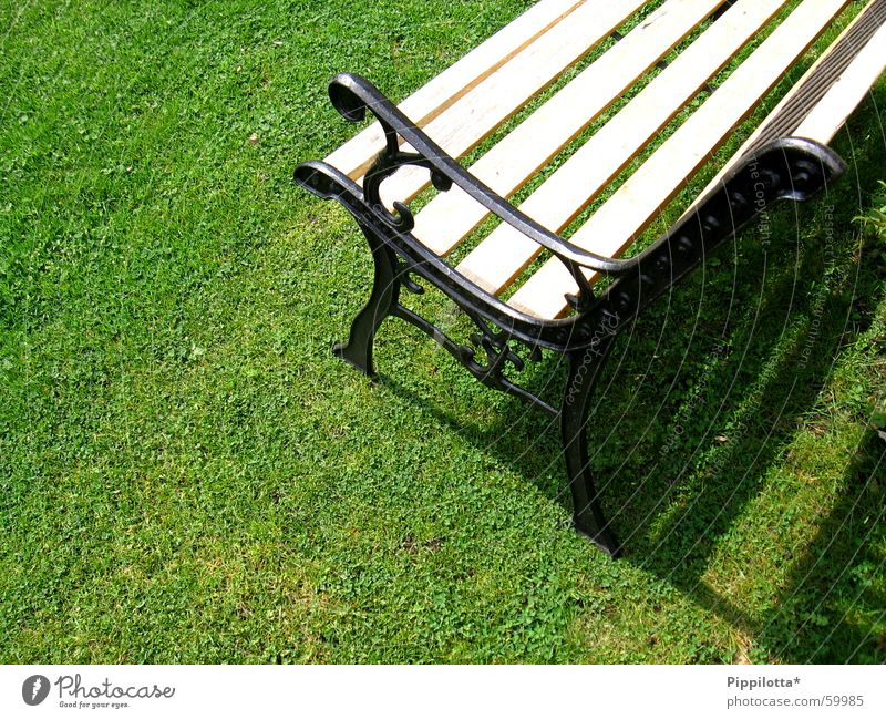 bank in the green Grass Green Physics Summer Style Bench Lawn Sun Sit Warmth Garden Shadow Relaxation