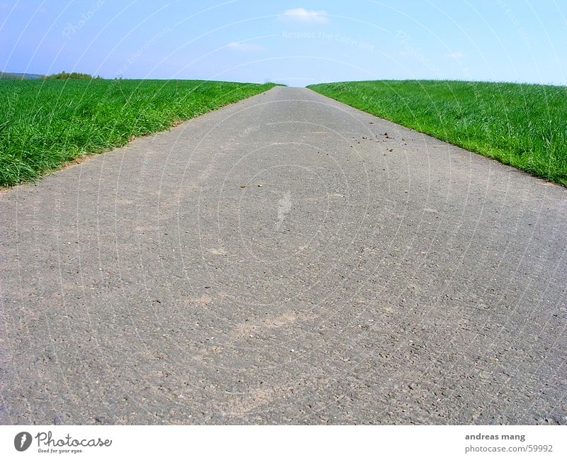 dirt road Footpath Grass Green Meadow Long Far-off places Field Sky Loneliness Tar Asphalt Lanes & trails Street way lone lonely