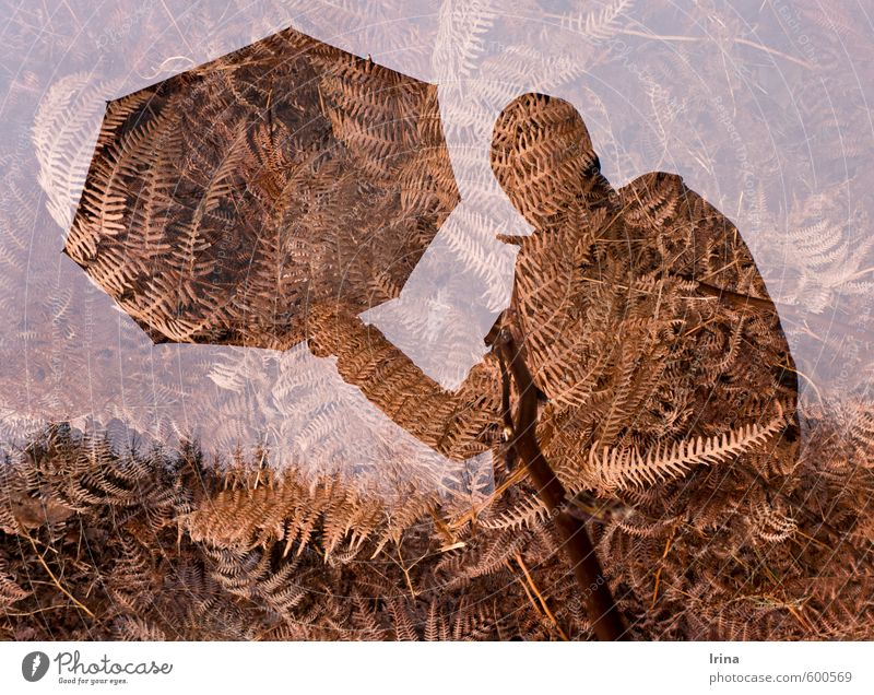 Human being Forest Exceptional Brown Weather Masculine Bushes Hiking Protection Help Umbrella Cap Double exposure Considerate Fern Wild plant