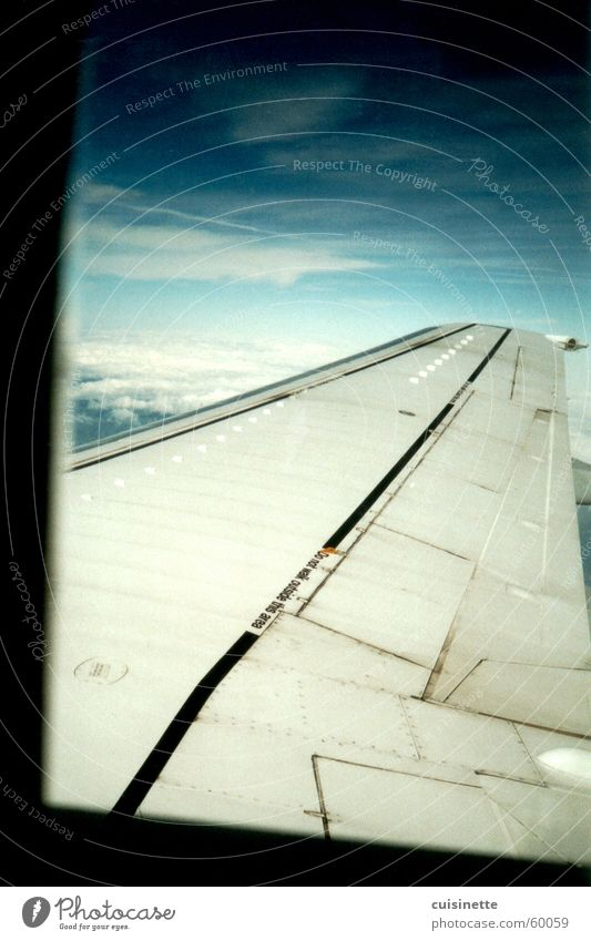 above the clouds Airplane Blue Clouds Wing Sky Freedom Typography Far-off places Vantage point Calm Infinity Window Aviation Joy
