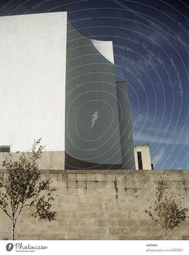 Sky Tree Wall (barrier) Religion and faith Portugal Natural stone