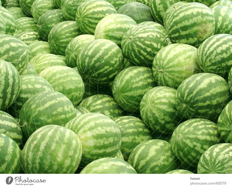 Water Summer Fruit Sweet Asia Harvest Markets Refreshment Water melon Tajikistan Duschanbe