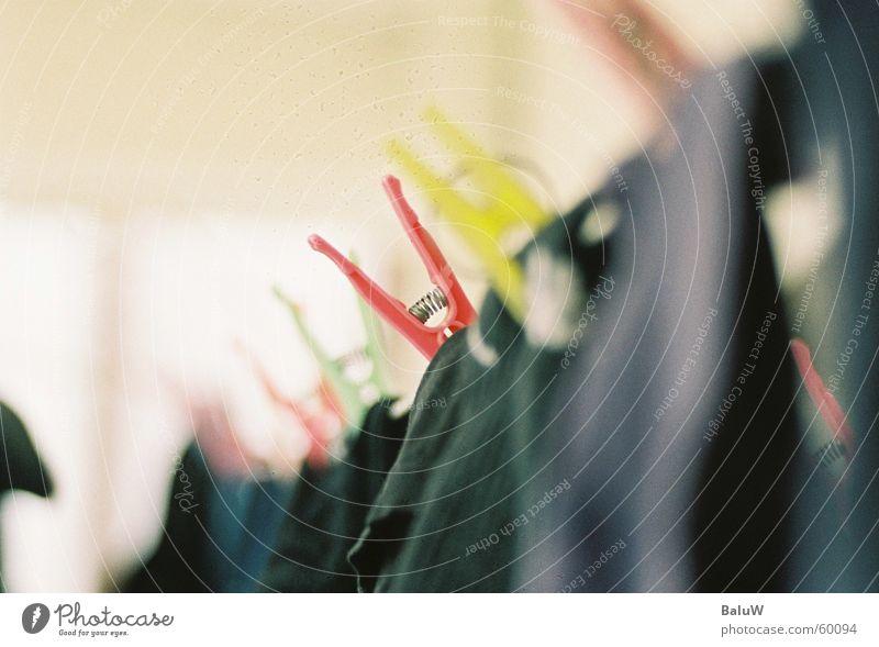 laundry Laundry Analog Holder Clothes peg Multicoloured canon Macro (Extreme close-up)