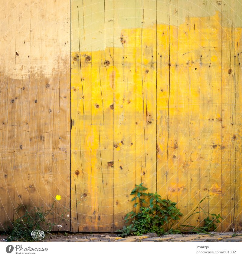 Colour Yellow Wall (building) Wall (barrier) Wood Bright Background picture Bushes Simple Painter Wooden wall