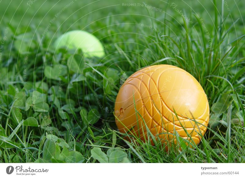 Play along! Catch Yellow Physics Green Bright green Leisure and hobbies Grass Playing Toys Boules Children's game Society Relationship Foreground