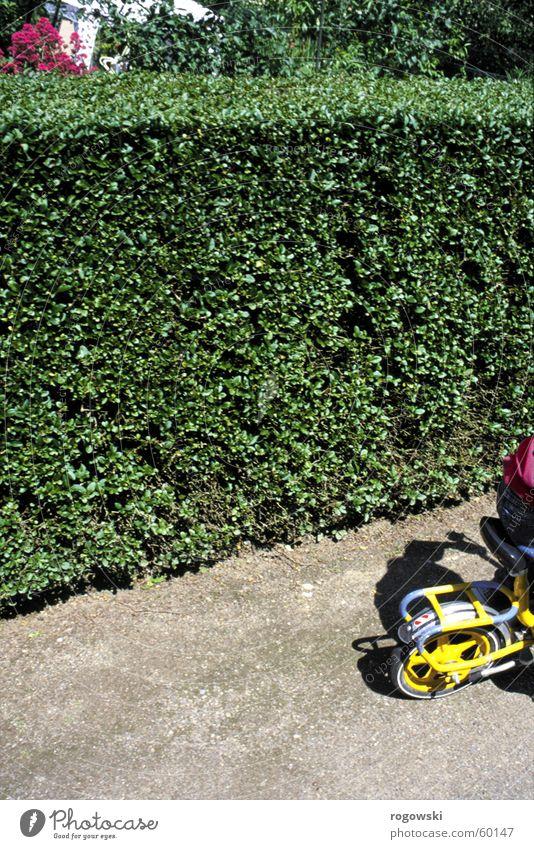 maze Child Kiddy bike Hedge Lanes & trails shrunken Contrast