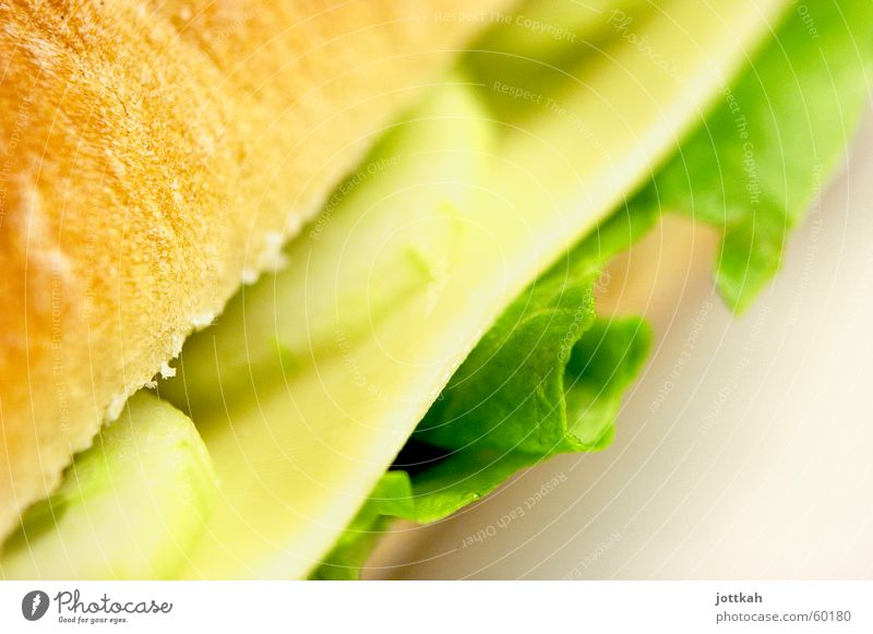 Green Nutrition Food Vegetable To enjoy Delicious Bread Roll Lettuce Cheese Salad Vegetarian diet Sandwich Cucumber Allocate Slices of cucumber