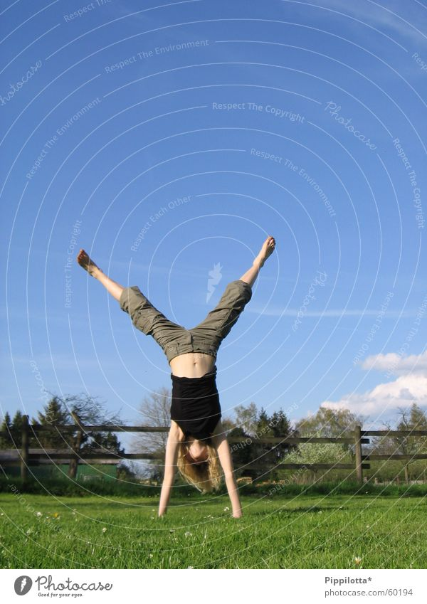 Human being Sky Summer Joy Clouds Sports Meadow Freedom Free Happiness Fence Gymnastics Blue sky Handstand On the head