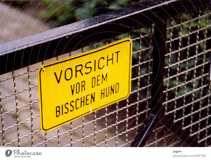 he just wants to play.... Dog Garden door Wordplay Yellow Fence Watchfulness Warning sign Garden fence Black Grating Joke Humor Animal Trenchant Postman Signage