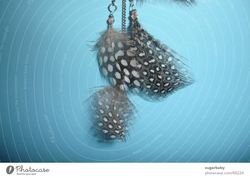 White Blue Brown Fog Feather Point Easy Pearl Chain Hang Fine Earring Light blue