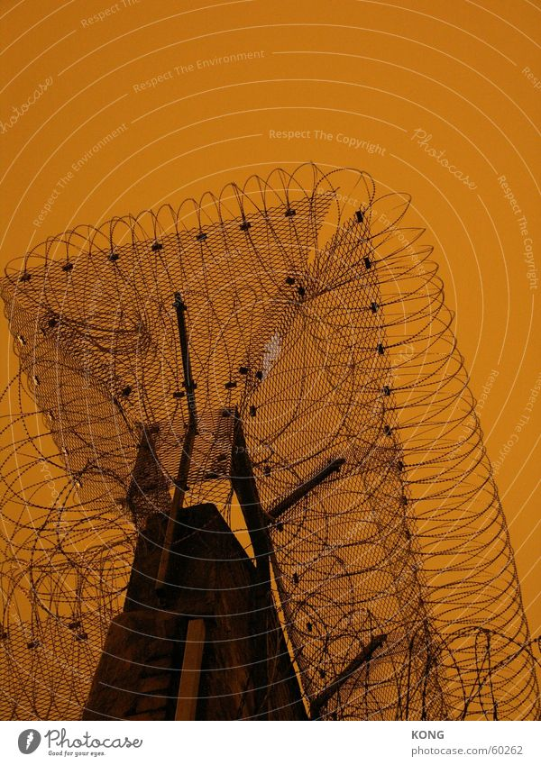 Sky Wall (barrier) Brown Orange Captured Penitentiary Cottbus Outbreak Jail sentence Barbed wire
