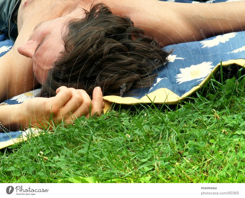 summer feeling Meadow Grass Man Hand Fingers Upper body Masculine Spring To enjoy Picnic Blanket Head Hair and hairstyles spmmer Lie Relaxation