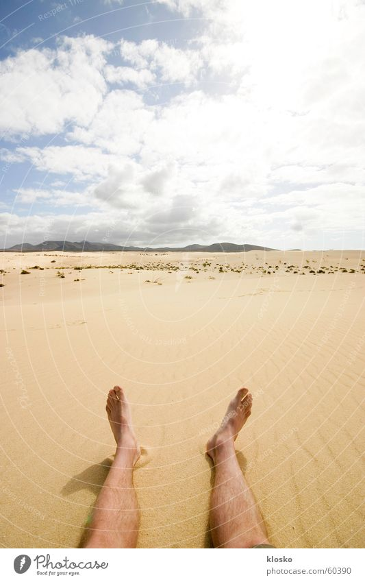 Barefoot in the desert Africa Hiking Physics Summer Hot Horizon Vantage point Infinity Loneliness Desert Sahara Fatigue Warmth Sun Feet Legs Sky Sand
