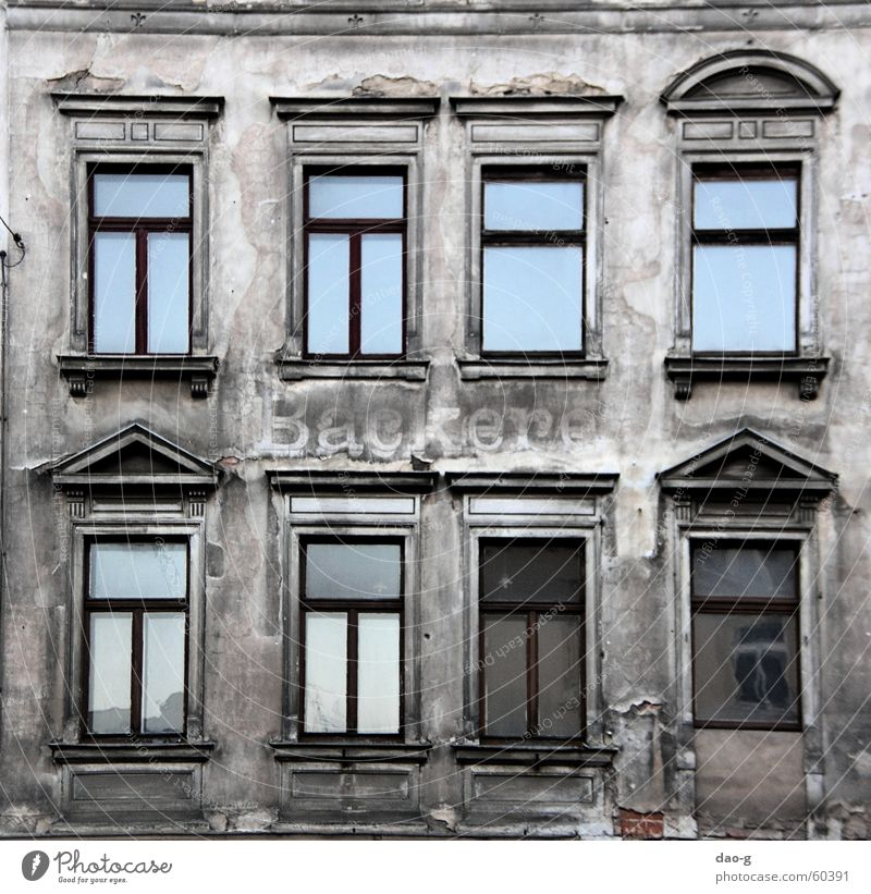 bakery a.d. Baker Bakery House (Residential Structure) Facade Wall (barrier) Plaster Ruin Window Dresden Neustadt Loneliness
