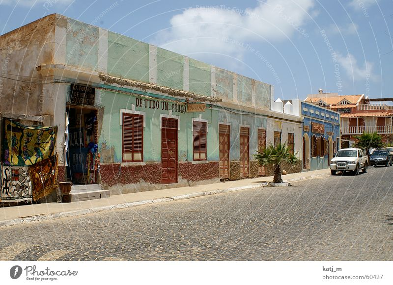 Colonial style in Cape Verde Cabo Verde House (Residential Structure) Housefront Palm tree Store premises Window Facade Fieldstone house Africa Santa Maria