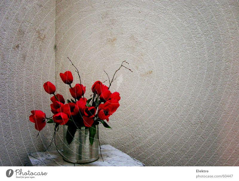 Flower Joy Art Rose Corner Poppy Bouquet Living room Tulip Patch Stick Plaster Pot Valentine's Day Speckled Marble