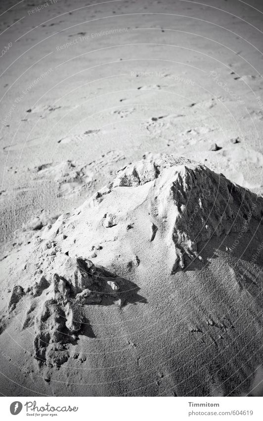 Nature Summer Beach Black Environment Gray Natural Sand Beautiful weather Esthetic Simple Tracks Denmark Sandcastle