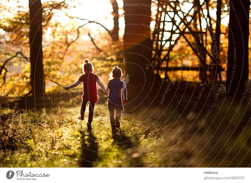 Human being Child Nature Girl Joy Forest Environment Feminine Autumn Playing Happy Natural Moody Together Contentment Infancy