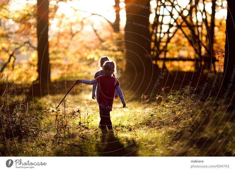 just the way you are vi Human being Feminine Child Girl Brothers and sisters Sister Infancy 2 3 - 8 years Environment Nature Autumn Beautiful weather Forest