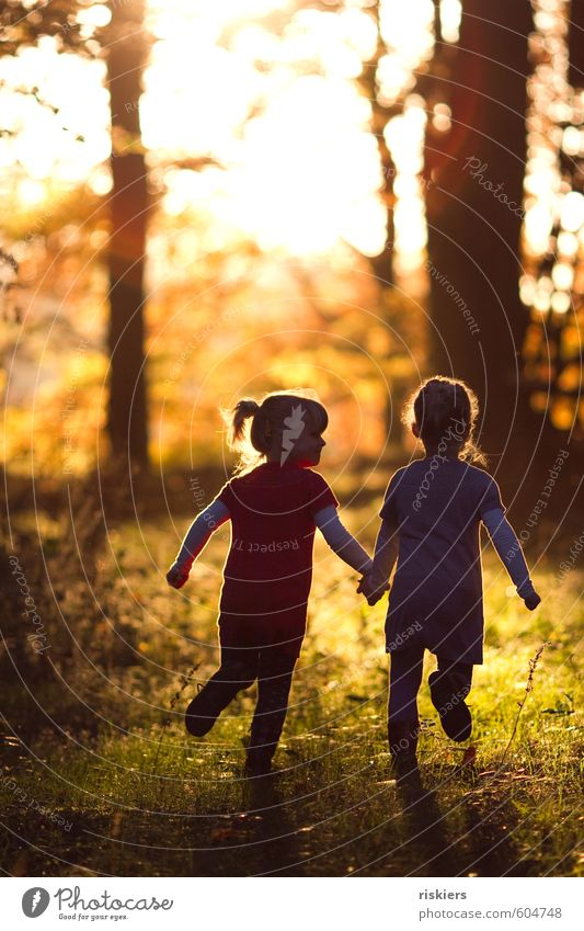 Human being Child Nature Girl Joy Forest Environment Feminine Autumn Playing Happy Natural Friendship Together Idyll Infancy