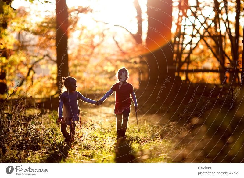 Human being Child Nature Landscape Girl Forest Environment Feminine Autumn Happy Natural Moody Dream Together Infancy Illuminate