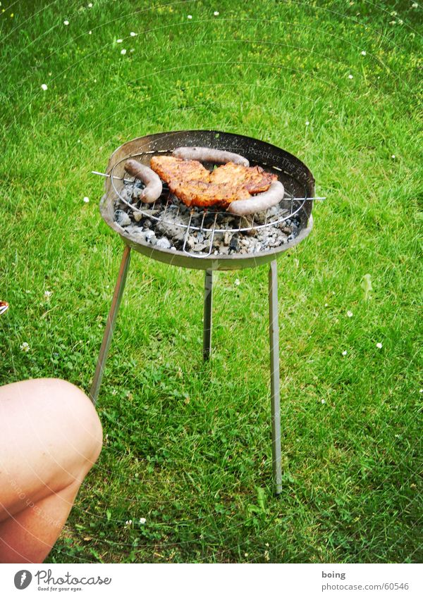 Summer Joy Meadow Garden Park Legs Wait Leisure and hobbies Barbecue (event) Meat Barbecue (apparatus) Sausage Cooking & Baking Knee Coal Embers