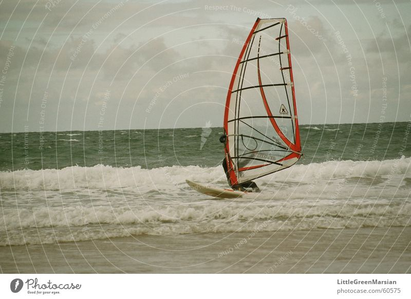 Riding the storm Beach Ocean Waves Sports Aquatics Windsurfing Sand Water Sky Sail On board Power Surfing Surfer Foam Salt Colour photo Exterior shot Day