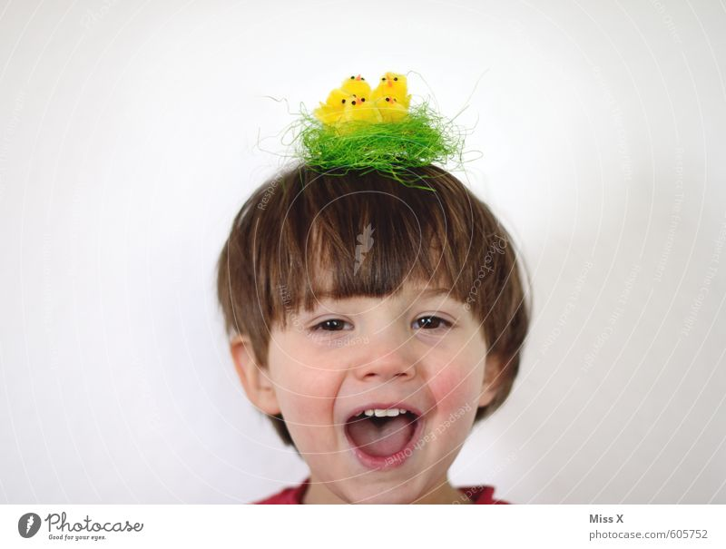 Human being Child Joy Animal Girl Baby animal Emotions Funny Boy (child) Laughter Hair and hairstyles Moody Bird Head Infancy Happiness