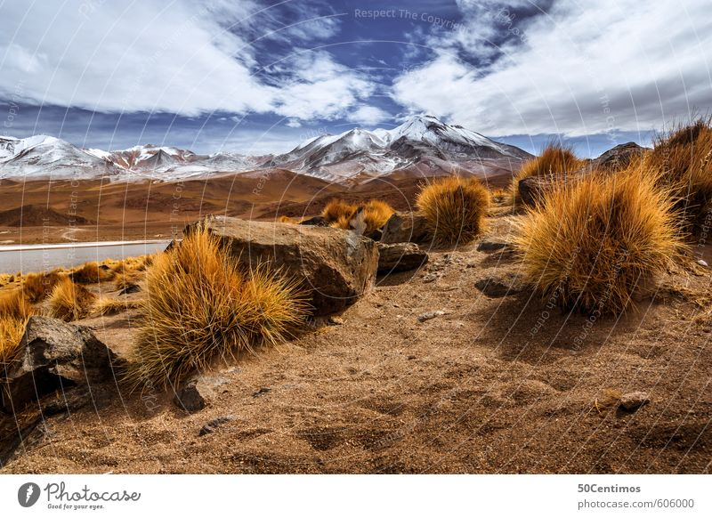 Desert mountain landscape in the Andes of Bolivia Vacation & Travel Tourism Trip Adventure Far-off places Freedom Snow Mountain Hiking Climbing Mountaineering