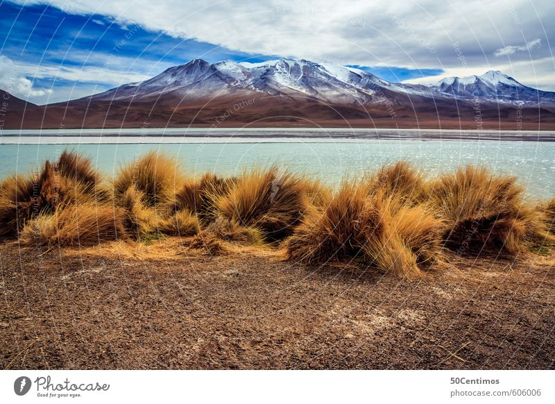 Mountain lake with desert mountain landscape in the Andes of Bolivia Vacation & Travel Tourism Trip Adventure Far-off places Freedom City trip Safari Expedition