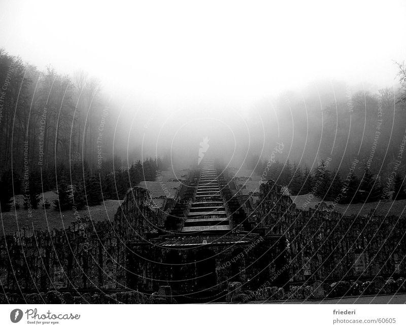 Hercules Fog Mystic Autumn Ruin Forest Kassel Black & white photo Stairs