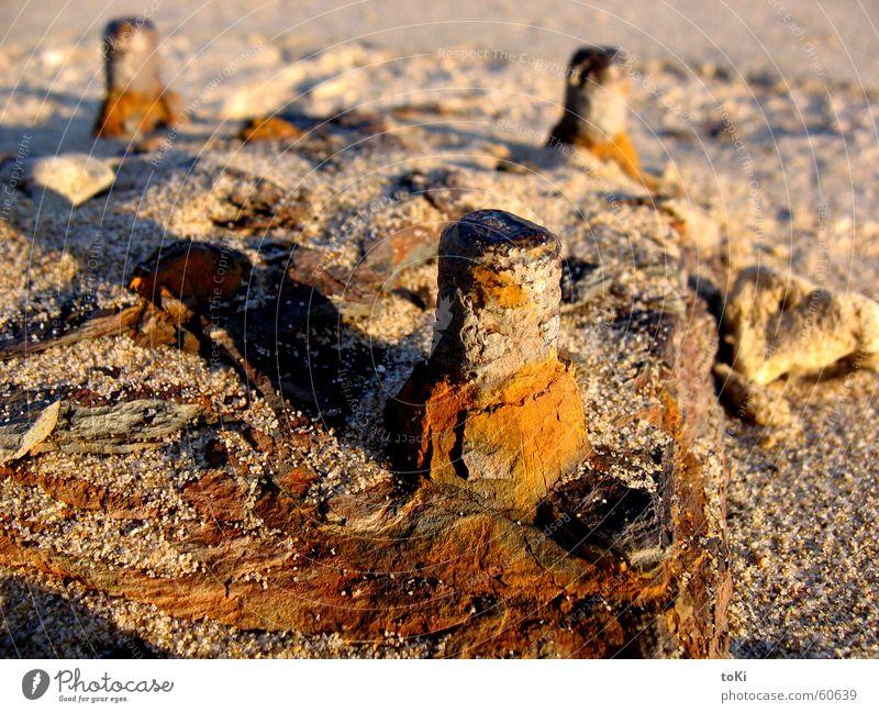 Summer Beach Loneliness Autumn Sand Earth Romance Swimming pool Italy Past Rust Memory Screw Beige Platform Foundations
