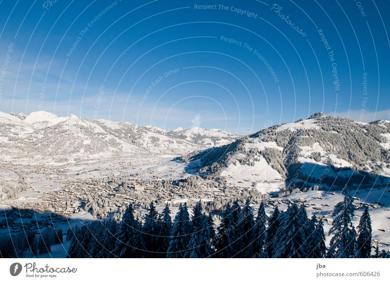Gstaad Life Relaxation Winter Snow Winter vacation Mountain Ski resort Nature Landscape Air Sky Beautiful weather Forest Alps Peak Switzerland Village