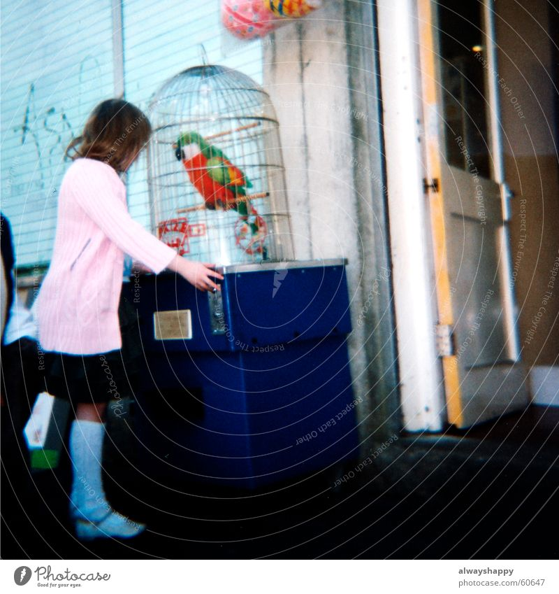 Girl Playing Pink Analog Trashy Shabby Medium format Parrots Game of chance Swindle Cardigan Gaming machine