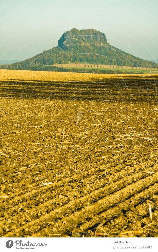 liilistone Trip Dresden Relaxation Autumn Landscape Nature Vacation & Travel Saxony Saxon Switzerland wallroth Elbsandstone mountains Liliesstein Field