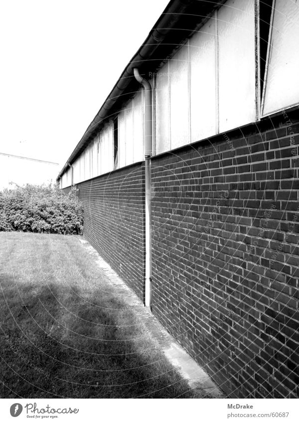 industrial wall Wall (building) Gray Decline Brick Derelict Bushes Heek Village Meadow Thought Future Past Exterior shot Industrial Photography Nature