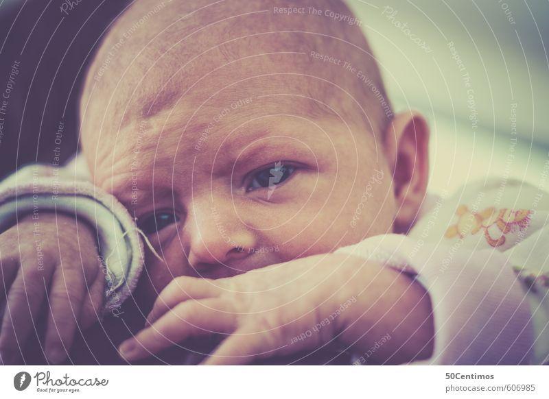 Human being Calm Adults Emotions Happy Head Contentment Infancy Baby To enjoy Friendliness Joie de vivre (Vitality) Mother Serene Parents Caution