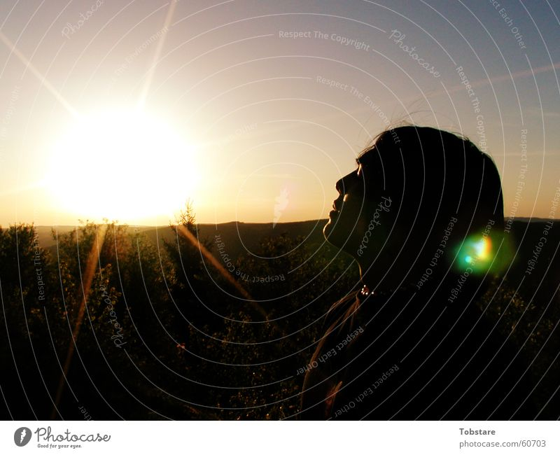 vs-sunrise Sunrise Sunlight Sunbeam Back-light Luminosity Dazzle Face of a woman Portrait photograph Profile Silhouette To enjoy Well-being Lens flare Warmth